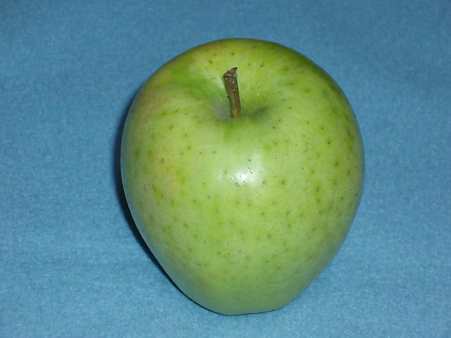りんごの世界